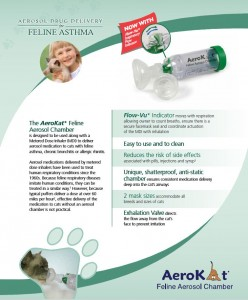 inhaled medication for cats dogs breatheazy breatheazy