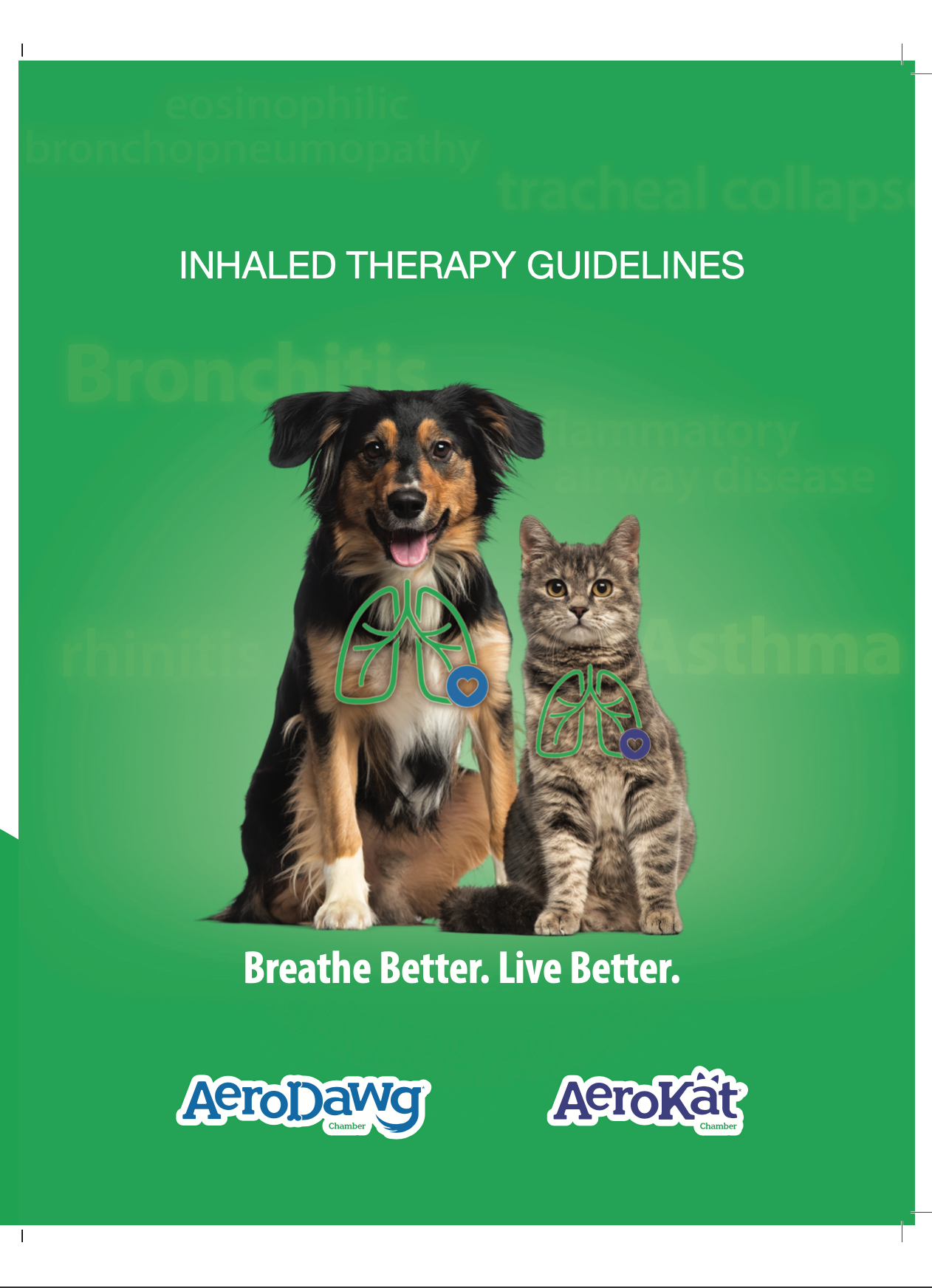 Inhaled therapy guidelines